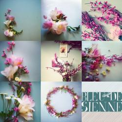 planche-fb-fleurs-bleu-de-sienne