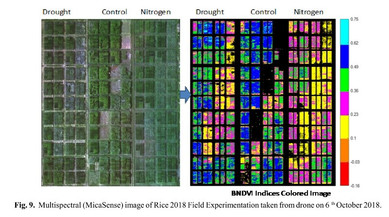 Geoinformatics for Next generation phenotyping to develop climate resilient rice varieties