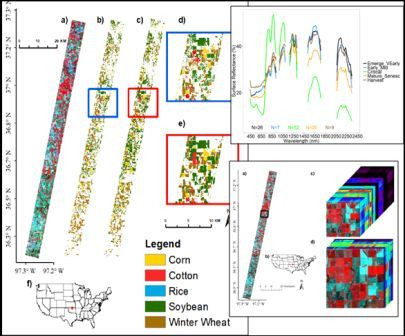 Optimal Classification of crops and crop-hyperspectral library creation using hyperspectral images