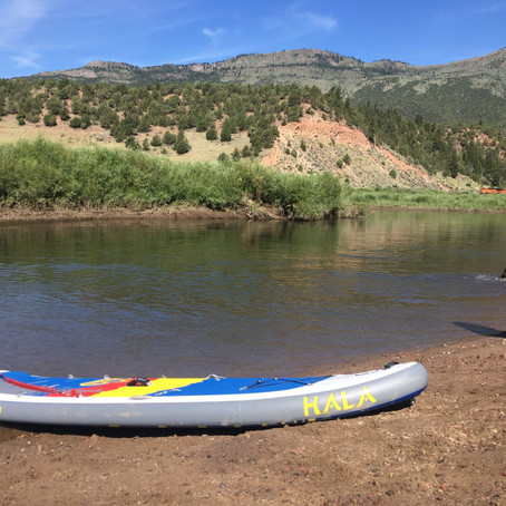 Essential Paddling: There's a Virtual Race Near You