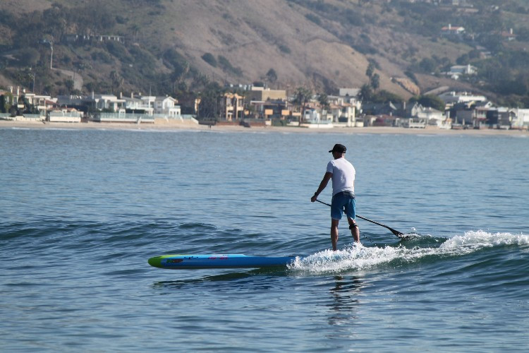 nsp puma, sup examiner, board review, michael kelley