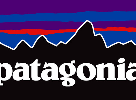 Patagonia's Commitment to Making Democracy More Accessible