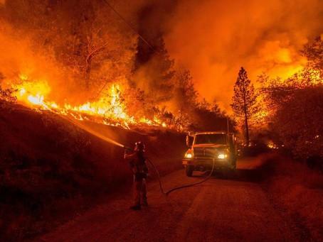 State Parks Provides Update on Structures Destroyed at Big Basin Redwoods State Park
