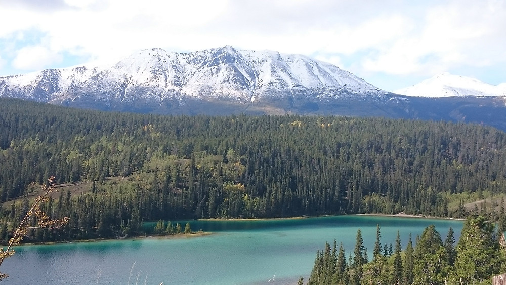 yukon river quest, paddling, canada, paddlexaminer