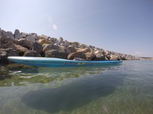Matt Chebatoris, Focus Bluefin, King Harbor, Redondo Beach, Stand Up Paddling
