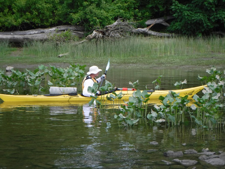 Four Days on the Hudson: Paddling from Albany to Peekskill, New York