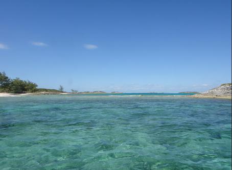 Kayaking In The Bahamas