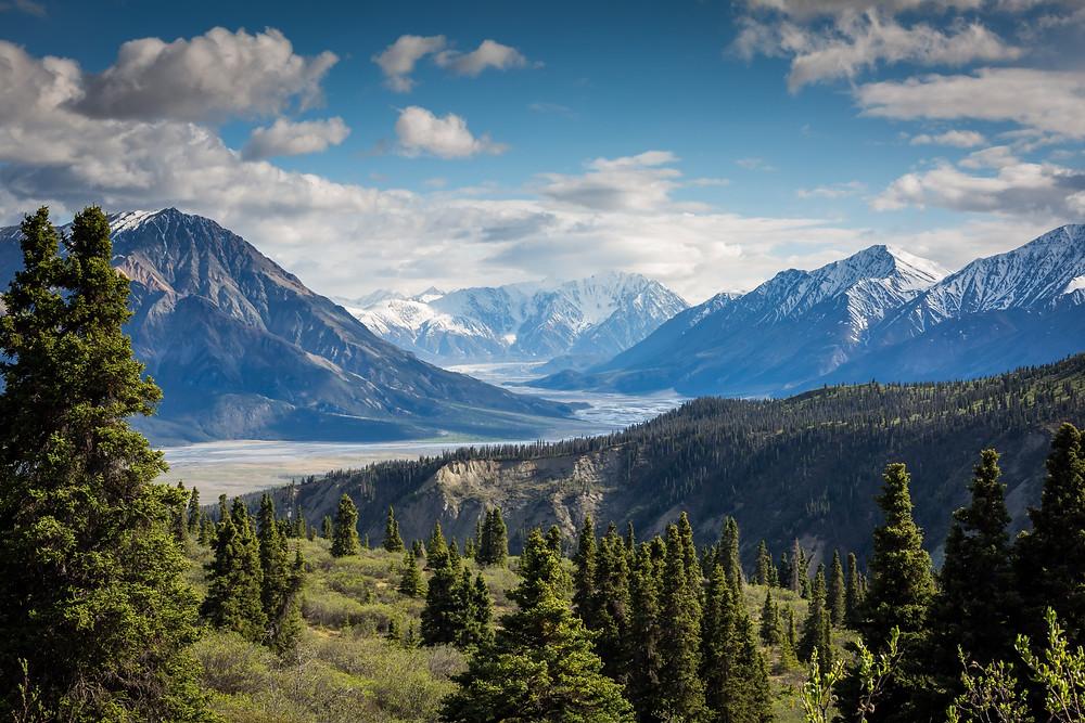 Yukon River Quest, Paddlexaminer