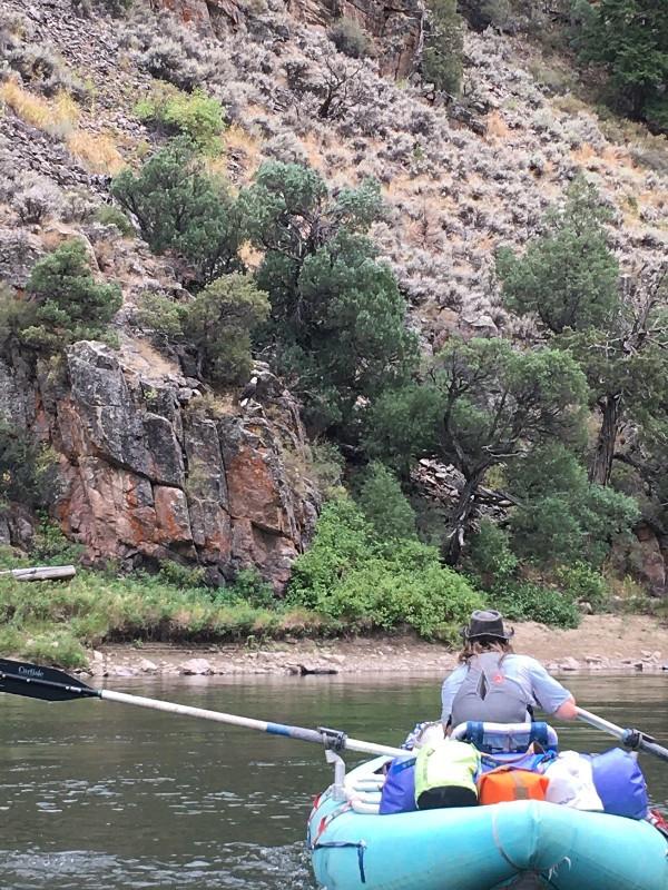 Animas dry bag, watershed, paddlexaminer, hala rado
