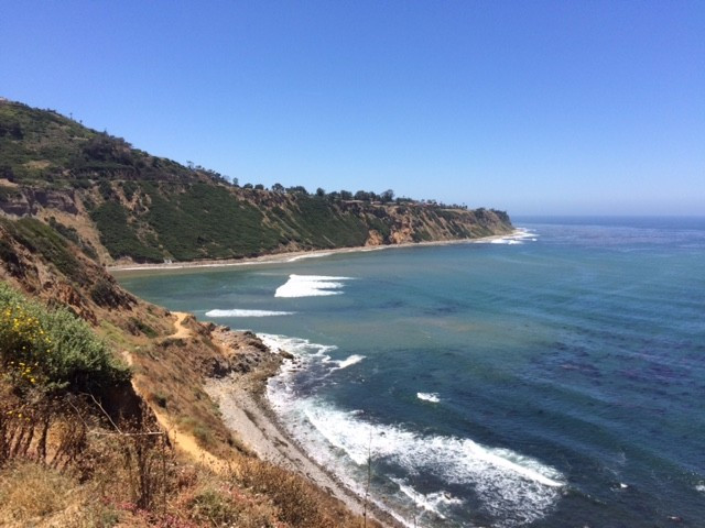 palos verdes, sup examiner, the cove, bluff cove