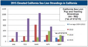 Sea Lion Strandings Chart