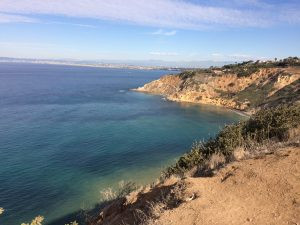 Bluff Cove, Palos Verdes, SUP Examiner