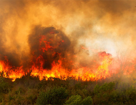 California State Parks Issues Full & Partial Closures Due to Wildfires