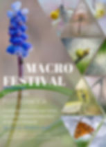 Locandina Macrofestival ok.jpg