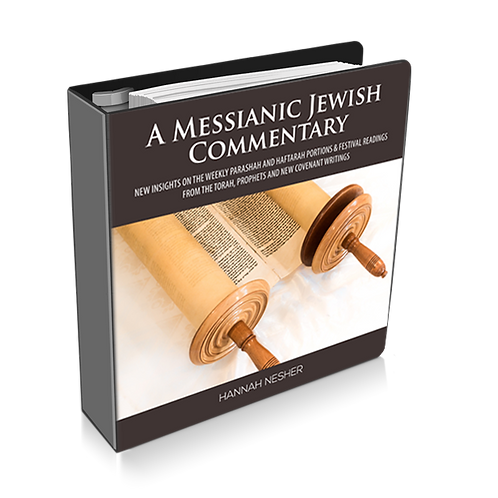 Chagim - Festivals A Messianic Jewish Commentary