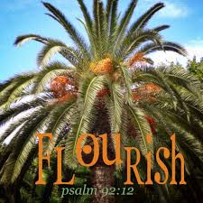 the righteous shall flourish like a palm tree