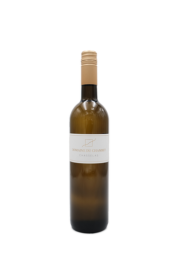 CHASSELAS.png