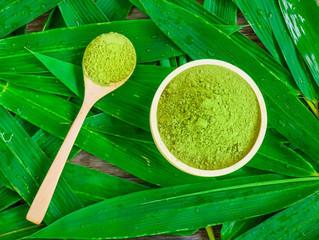 First Blog Post - Green Tea Experience