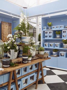 Wedgwood RHS Tearoom Shop.jpg