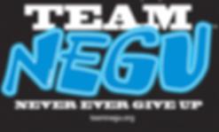 TeamNEGULogo-50fb27fa4bdca.png