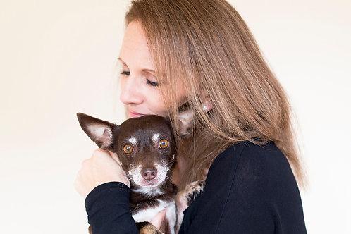 Animal Communications