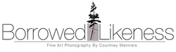 Borrowed Likeness Logo.png