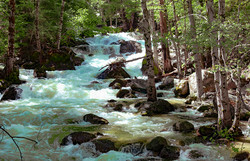 Merced River Spring Rapids, Afternoon AA