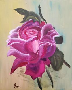Rose of Hinda