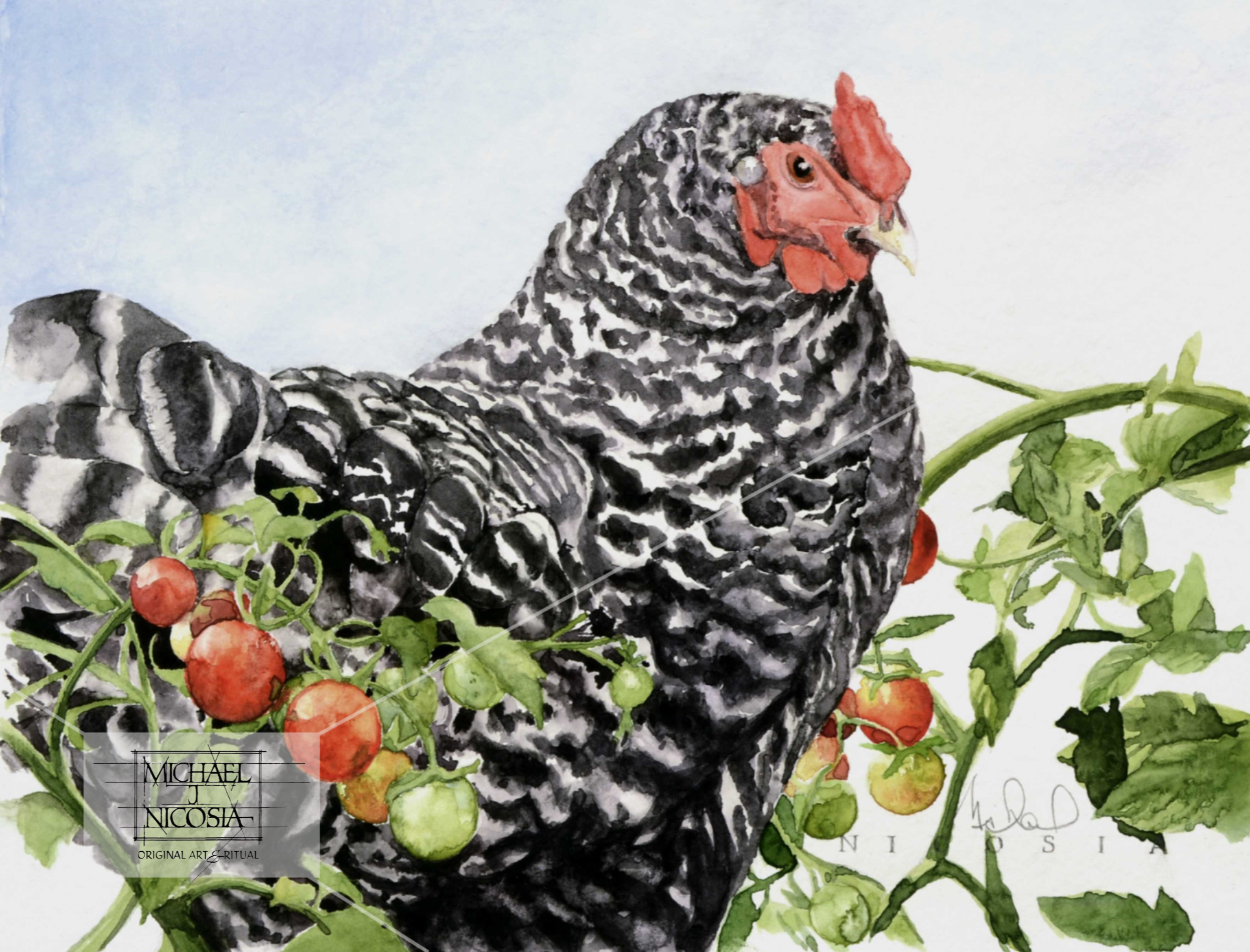 Henrietta, in the tomatoes again    watermark