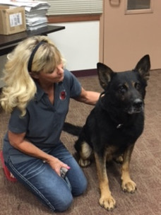 K9 Fin with Mary