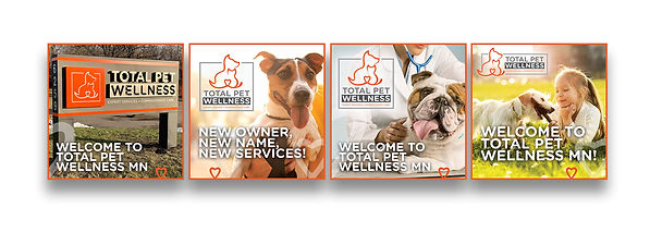 wellness-Social-Media-examples.jpg