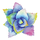 Color_flower_small.png