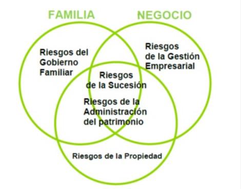 Los Riesgos En La Empresa De Familia