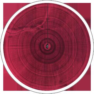 10CM Infrared