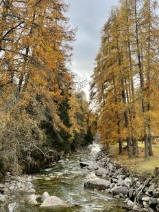Wanderung Ernen Niederwald