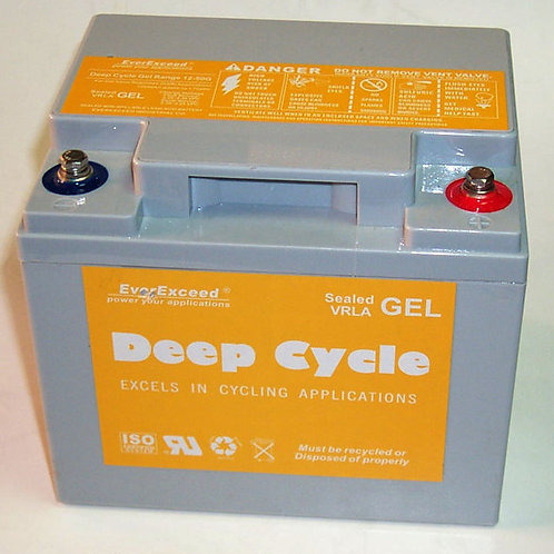 Batería PB GEL EverExceed EXG12300 de 12V 26AH