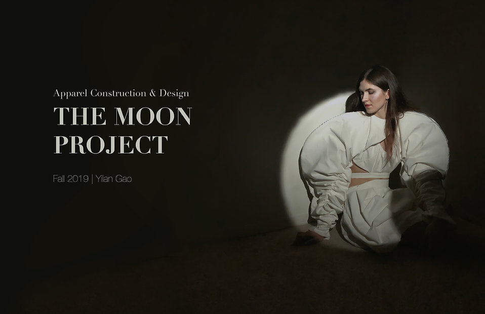 The Moon Project.jpg