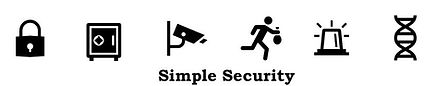 VIdeo Security Dallas Simple Video Security
