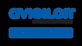 Avigilon Authorized Partner Logo.png