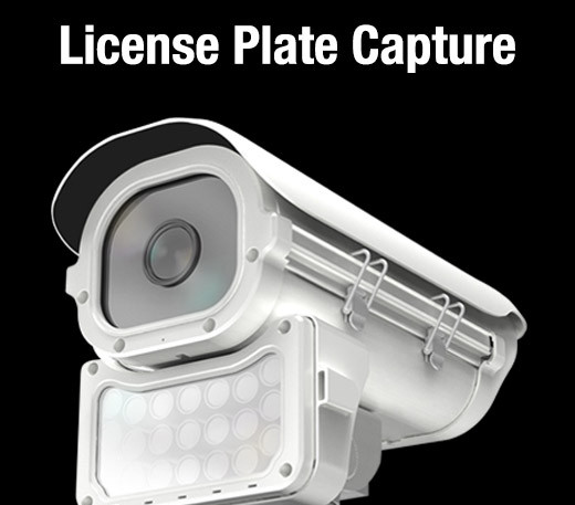 license-plate3.jpg