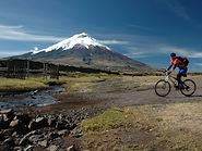 Ciclista y Cotopaxi