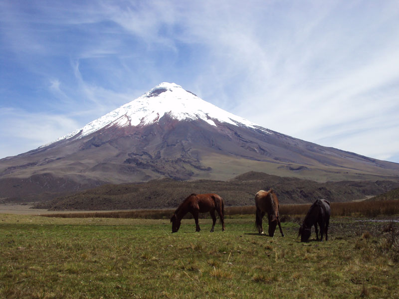 cotopaxi_national_park2