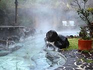Ecuador Termas de Papallacta Hot Springs