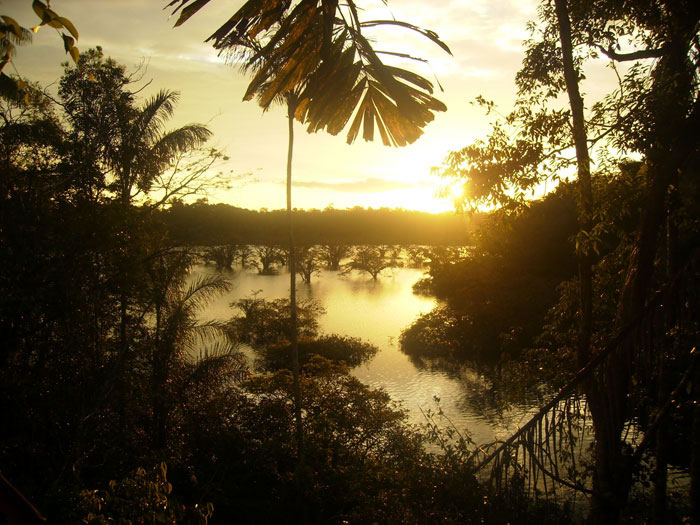 Siona Amazon Lodge