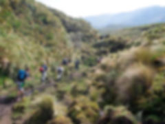 ANTISANA, ECUADOR CLIMBING TOUR