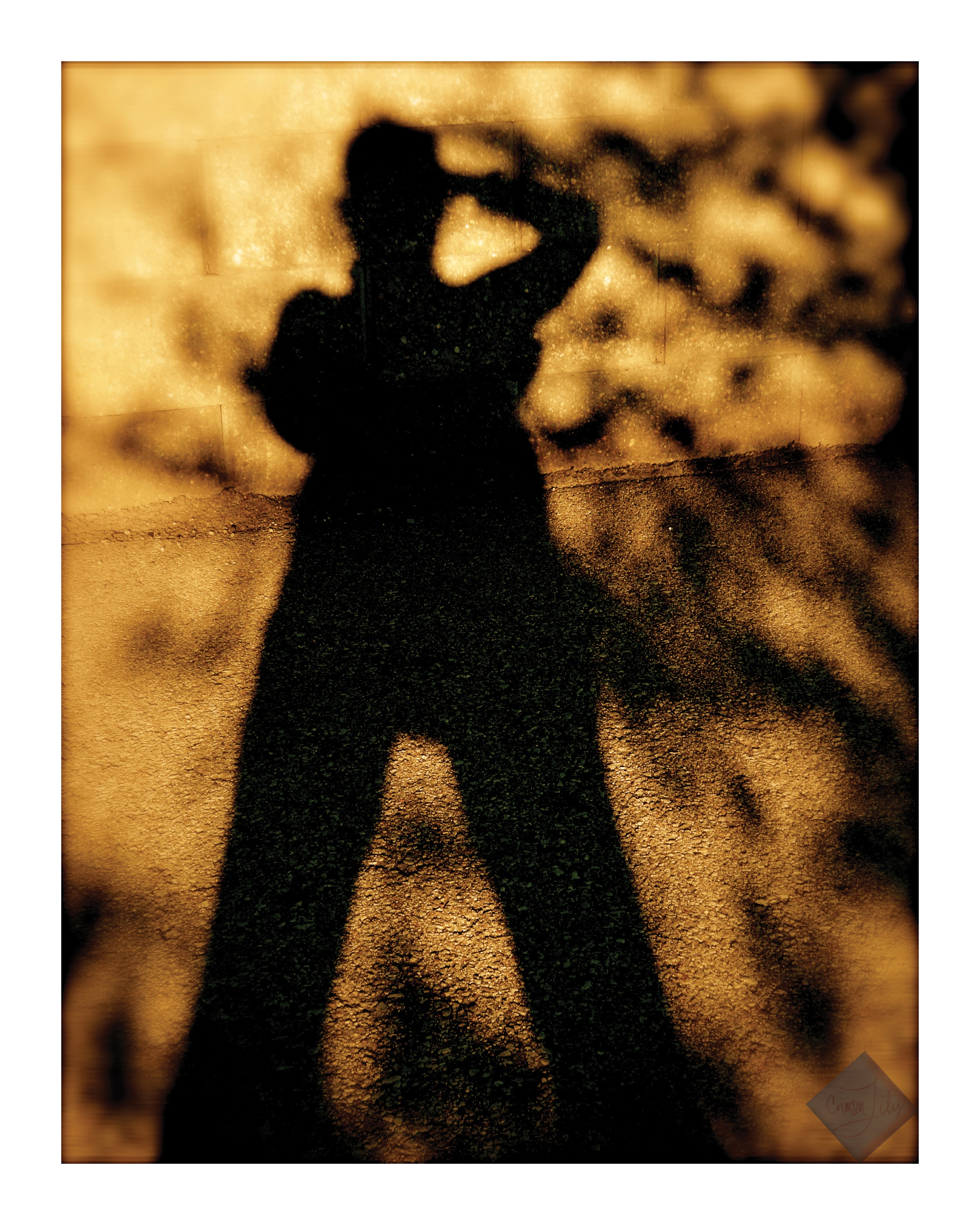 Shadow of Myself