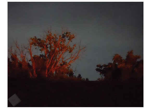 Red Tree Rising