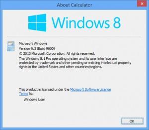 windows-8-version-6_3-300x261.jpg