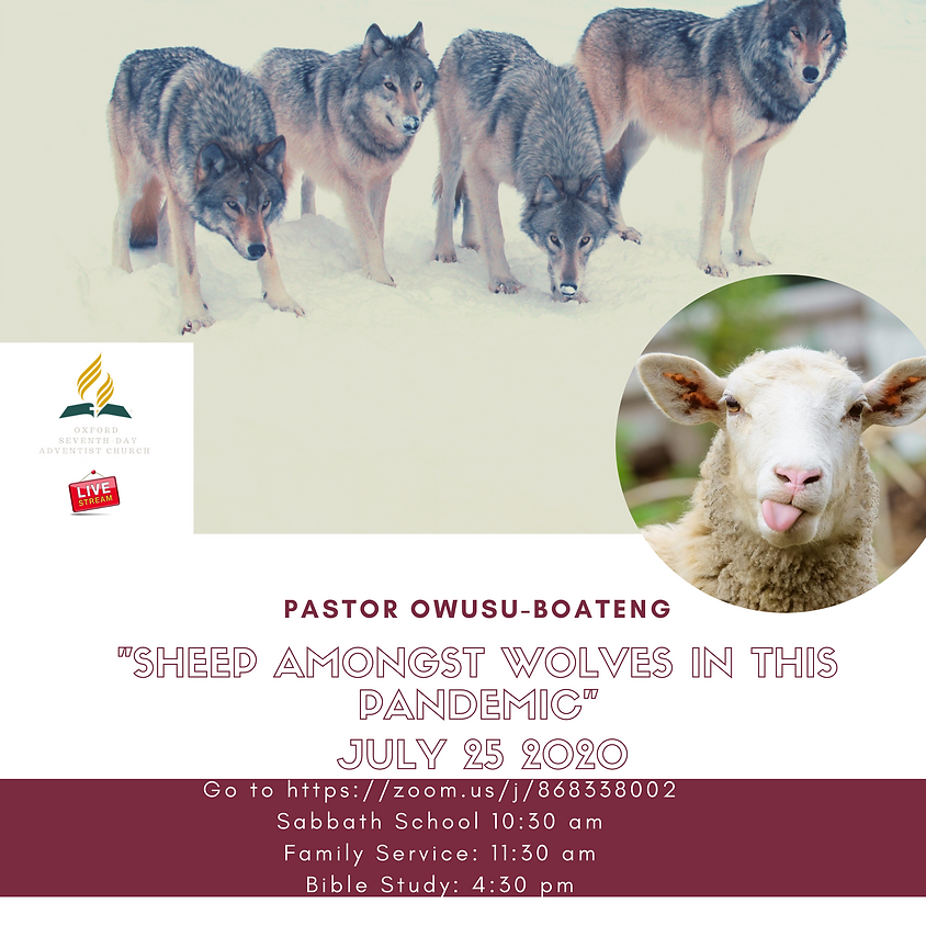 Sheep amongst wolves in this pandemic with Pastor Owusu-Boateng