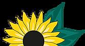 Gärtner Behn, Garten, Landschaftsbau, Pflanzenverkauf